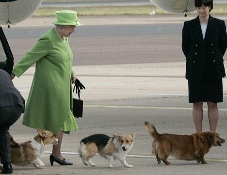 全世界开车不需要驾照的就只有她了!英国女王这些特权也太令人羡慕了吧