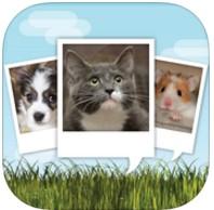 4/22限时免费App特辑:宠奴请服用!可与萌宠对话的特效App