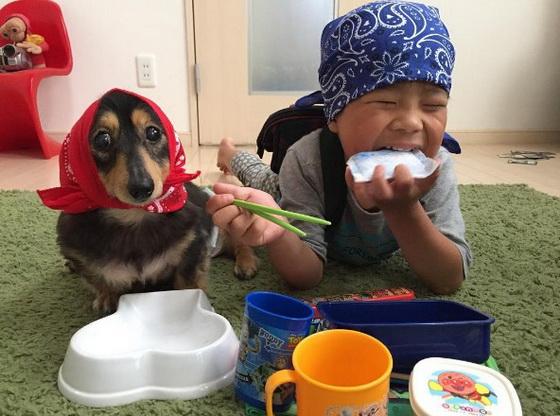 童年生活「肠肠」这样最棒了!让你不禁嘴角上扬的腊肠家族愉快日常