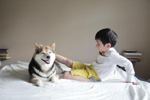 终于等到你长大了❤混血小正太和萌萌柴犬的玩乐日记