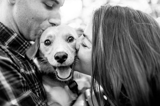 跟毛孩说「爱你」的次数比对男友说的还多!9个养宠物的情侣会遇到的状况