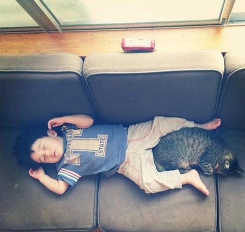 最喜欢有你陪伴的日子!4孩2猫的可爱成长日记