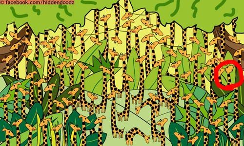 长颈鹿跟蛇是要怎么分啦!寻找威利小动物版让你越玩越上瘾