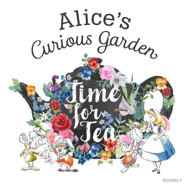 「愛麗絲」的圖片搜尋結果