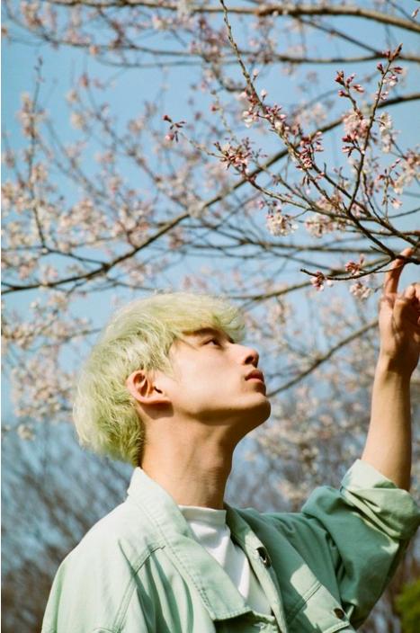 金发跟黑发造型一次拥有!坂口健太郎首部写真集《25.6》四季全包