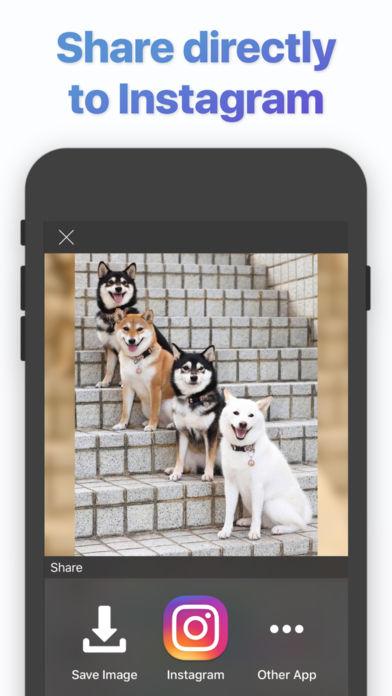 01/25限时免费App特辑:用《Fotor》让照片更有意境感吧!
