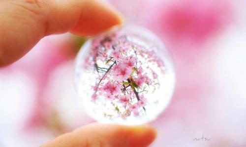 透过玻璃看见的世界是这样?颠覆视觉的唯美艺术摄影