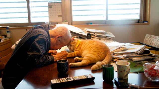 爷爷生病后陷入忧郁和易怒… 直到这只猫咪再次改变他的人生